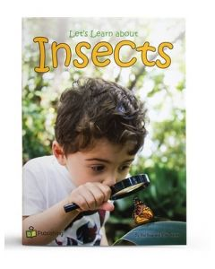 Big Book 'Let's Learn About Insects'
