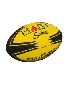 School Property Football