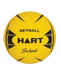 School Property Netball