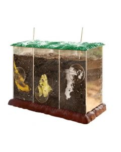 See-Through Compost Container