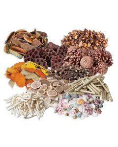 Natural Craft Essentials Set