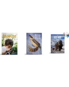 Let's Learn about Insects, Birds Around the Billabong and The Ice Age Big Books Set
